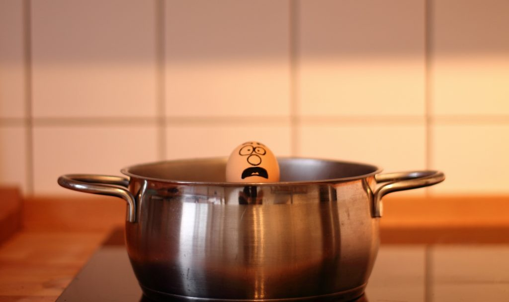 egg in pot